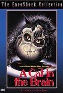 Nightmare Concert A Cat in the Brain/Un gatto nel cervello 1990